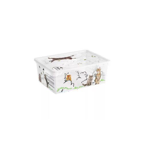 Műanyag tárolódoboz C box S Pet 11l cicás
